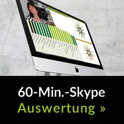 Skype Analyse: 60 Minuten mit einem Experten - live